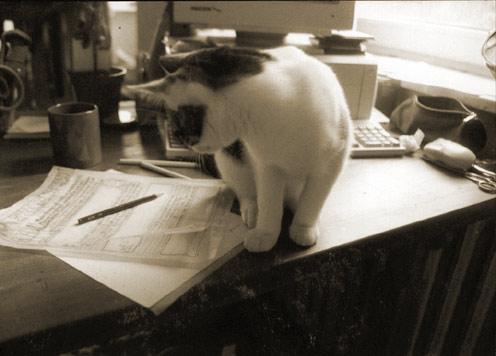 Die Schreibwerkstatt